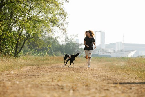 Cheerful woman running with Collie dog in nature