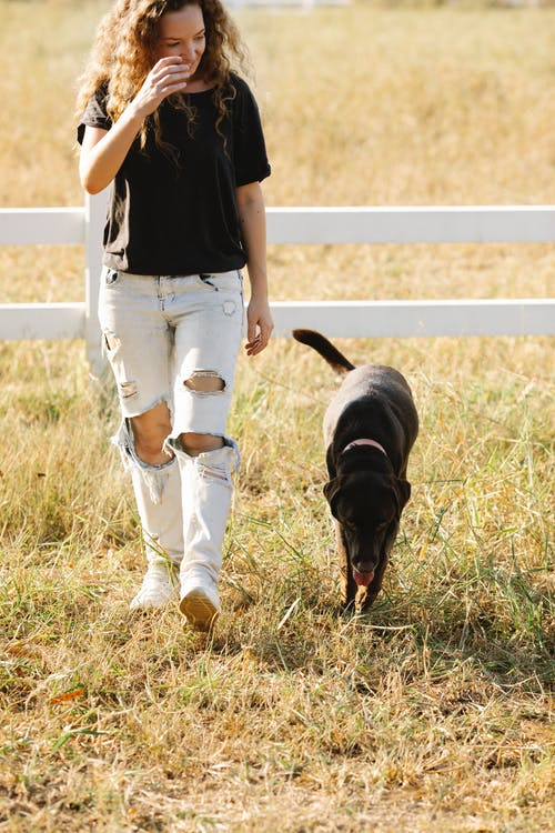 Crop cheerful woman and dog walking in farmland enclosure
