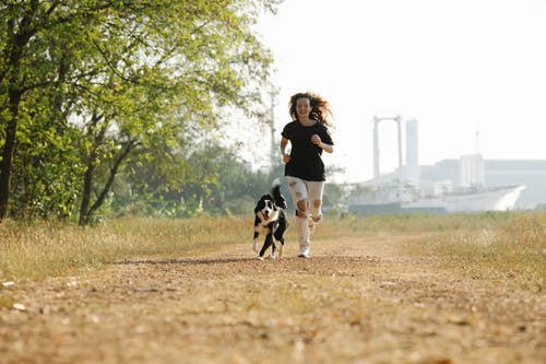 Full body happy young female in casual shirt and ripped jeans running with cute black Border Collie dog along footpath in summer nature