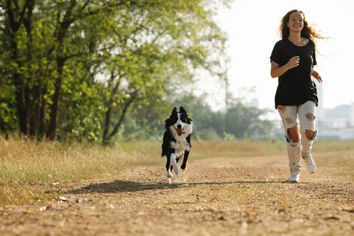 Full length cheerful young female in casual clothes running near adorable Border Collie along pathway in sunny countryside