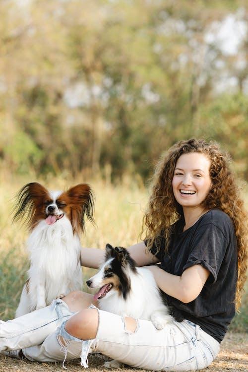 Immagine gratuita di allegro, animale, animale domestico