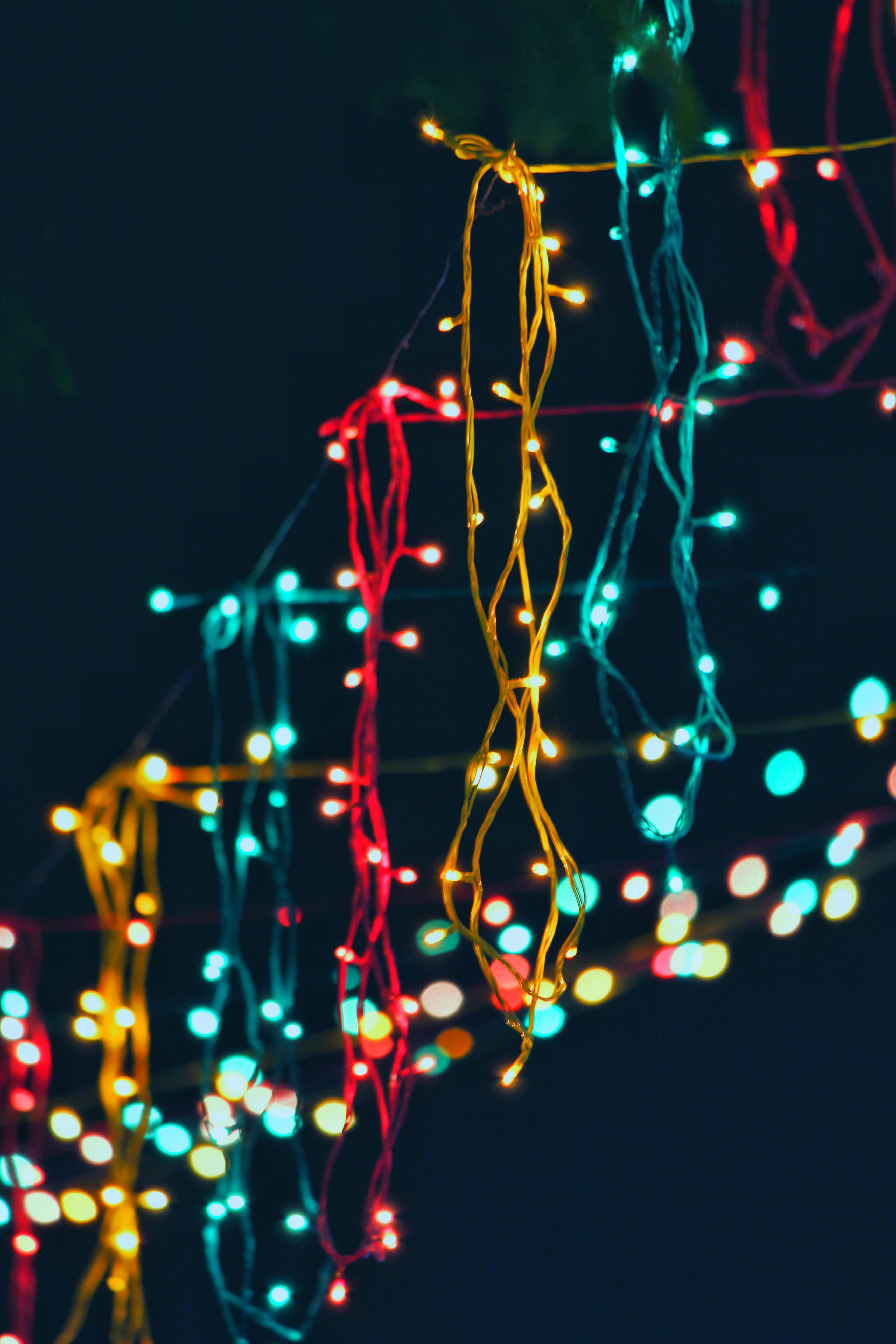 Assorted Lighted String Lights