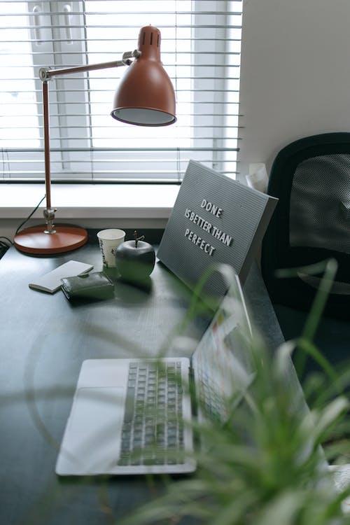 aygıt, bitki, çalışma alanı içeren Ücretsiz stok fotoğraf