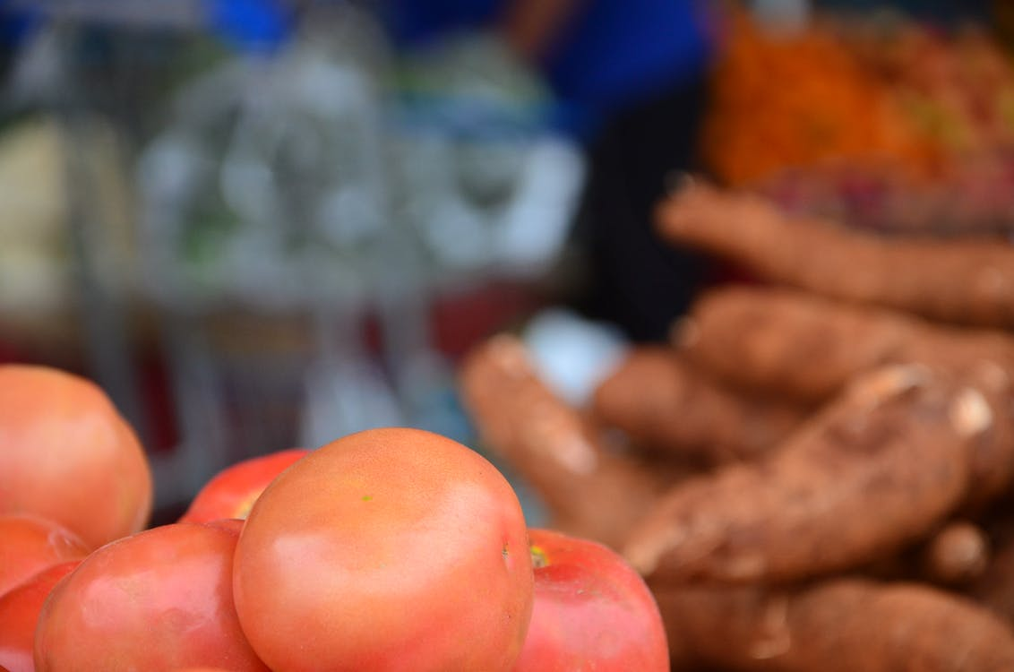 Free stock photo of tomate