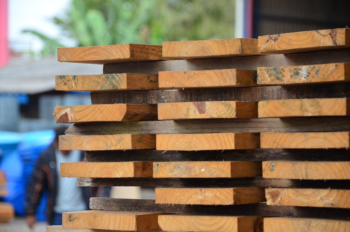 Free stock photo of madeira