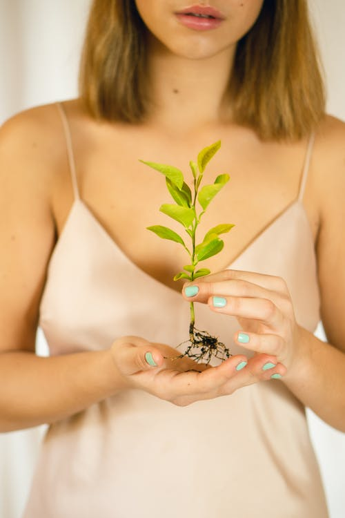 Crop stylish model with manicure and plant seedling
