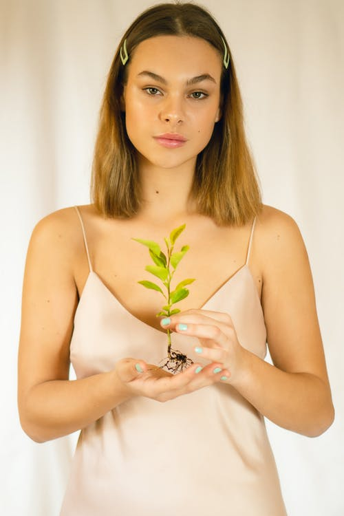 Young tender female in elegant apparel with hair pins and Ruscus plant seedling looking at camera