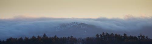 Darmowe zdjęcie z galerii z drzewa, góra, krajobraz, panorama