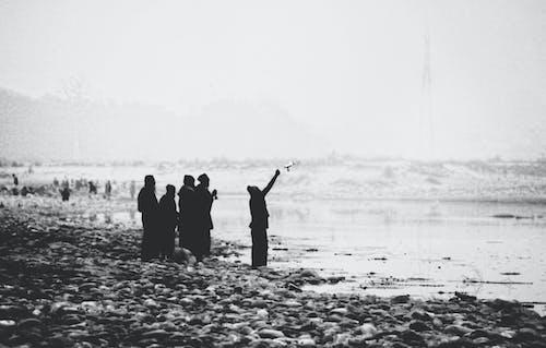 Free stock photo of 550d, beautiful, black and white, black&white