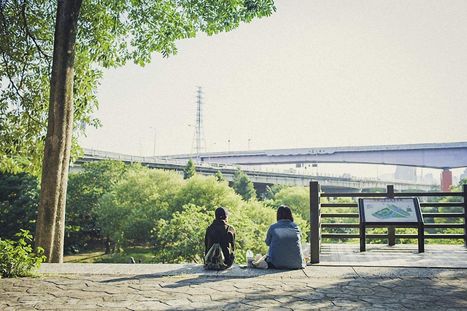 Free stock photo of sunny, shanghai