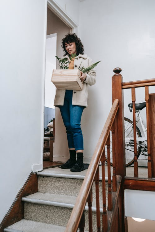 Woman Going Down The Stairs With Box Of Plants