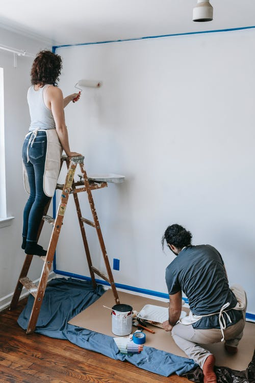 Free stock photo of adult, brush, creativity