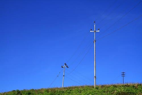 คลังภาพถ่ายฟรี ของ กลางแจ้ง, ทุ่งหญ้า, ท้องฟ้า, ท้องฟ้าสีคราม