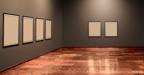 Free stock photo of art, design, exhibition