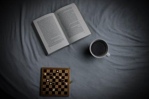 Безкоштовне стокове фото на тему «#book, #chess, #cub»