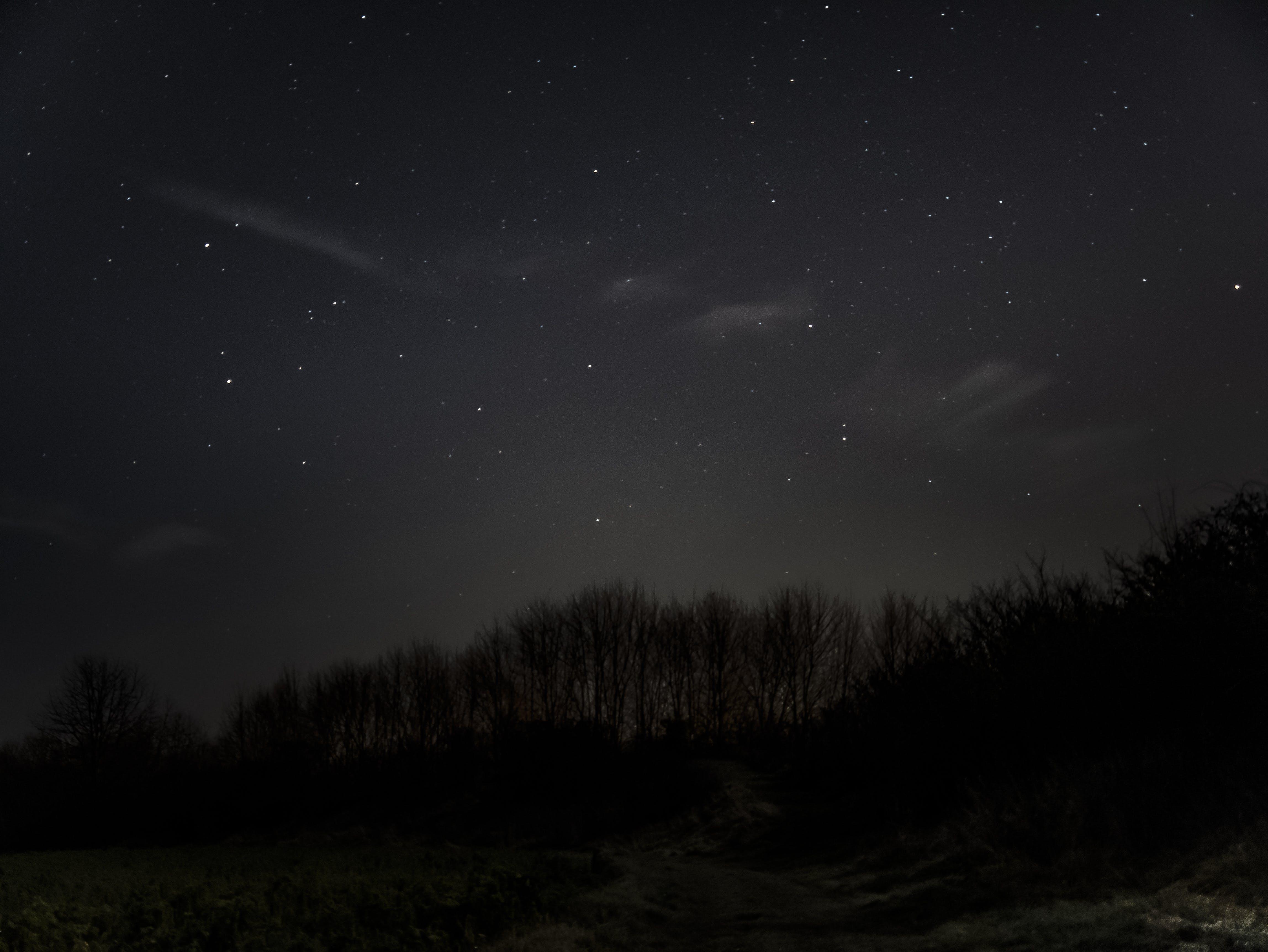 Free stock photo of #night, #skys, #winter