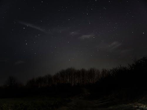 Безкоштовне стокове фото на тему «#night, #skys, #winter»