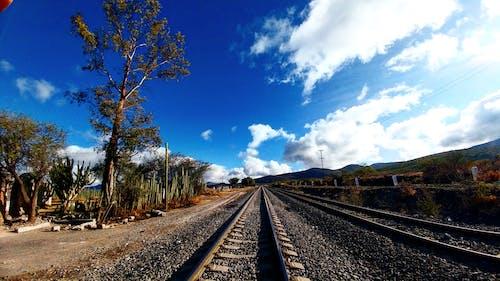 Imagine de stoc gratuită din naturaleza, tren