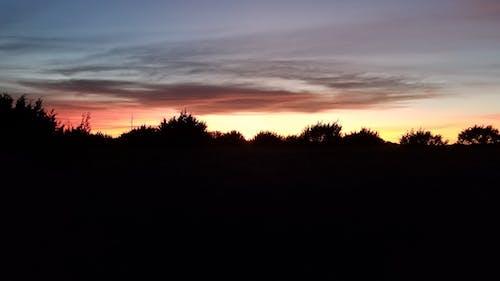 Free stock photo of evening, sunset, treeline