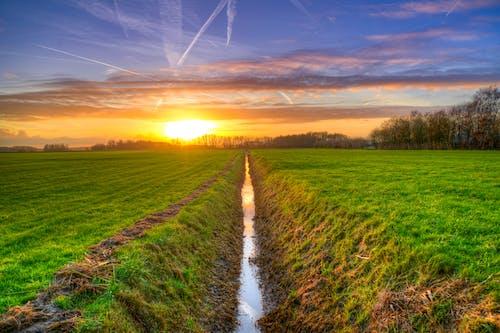 คลังภาพถ่ายฟรี ของ งดงาม, ชนบท, ดวงอาทิตย์, ตะวันลับฟ้า