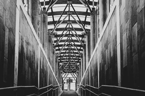 Grayscale Photo of a Metal Bridge