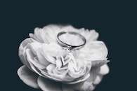 Photo of Silver Ring