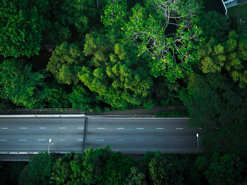 Gratis arkivbilde med dronekamera, grønn, hovedvei, singapore