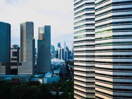 Ảnh lưu trữ miễn phí về các tòa nhà, cảnh quan thành phố, cao tầng, cây