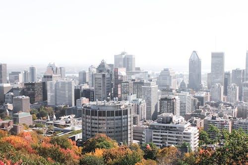 加拿大, 城市, 市中心, 攝影 的 免费素材照片