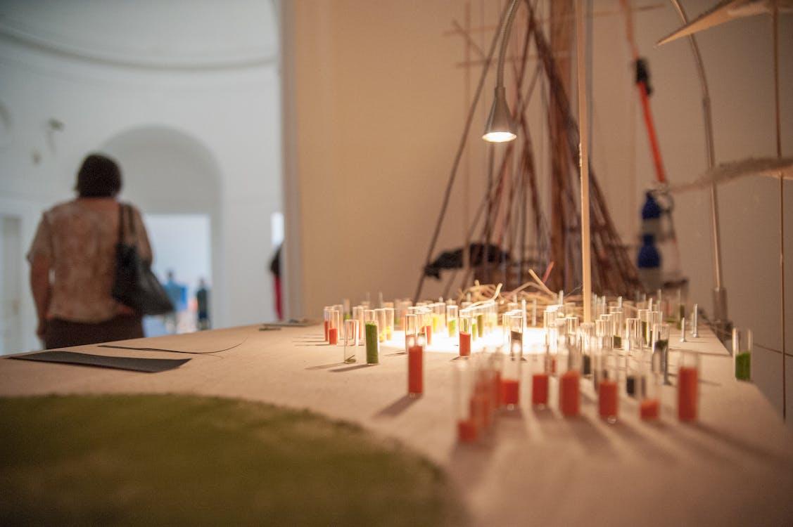 Free stock photo of art, art exhibition, art installation