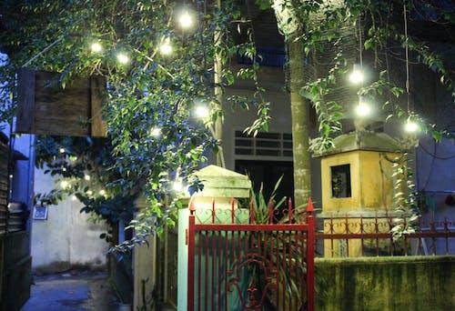 光, 夜生活, 夜間攝影, 攝影 的 免费素材照片