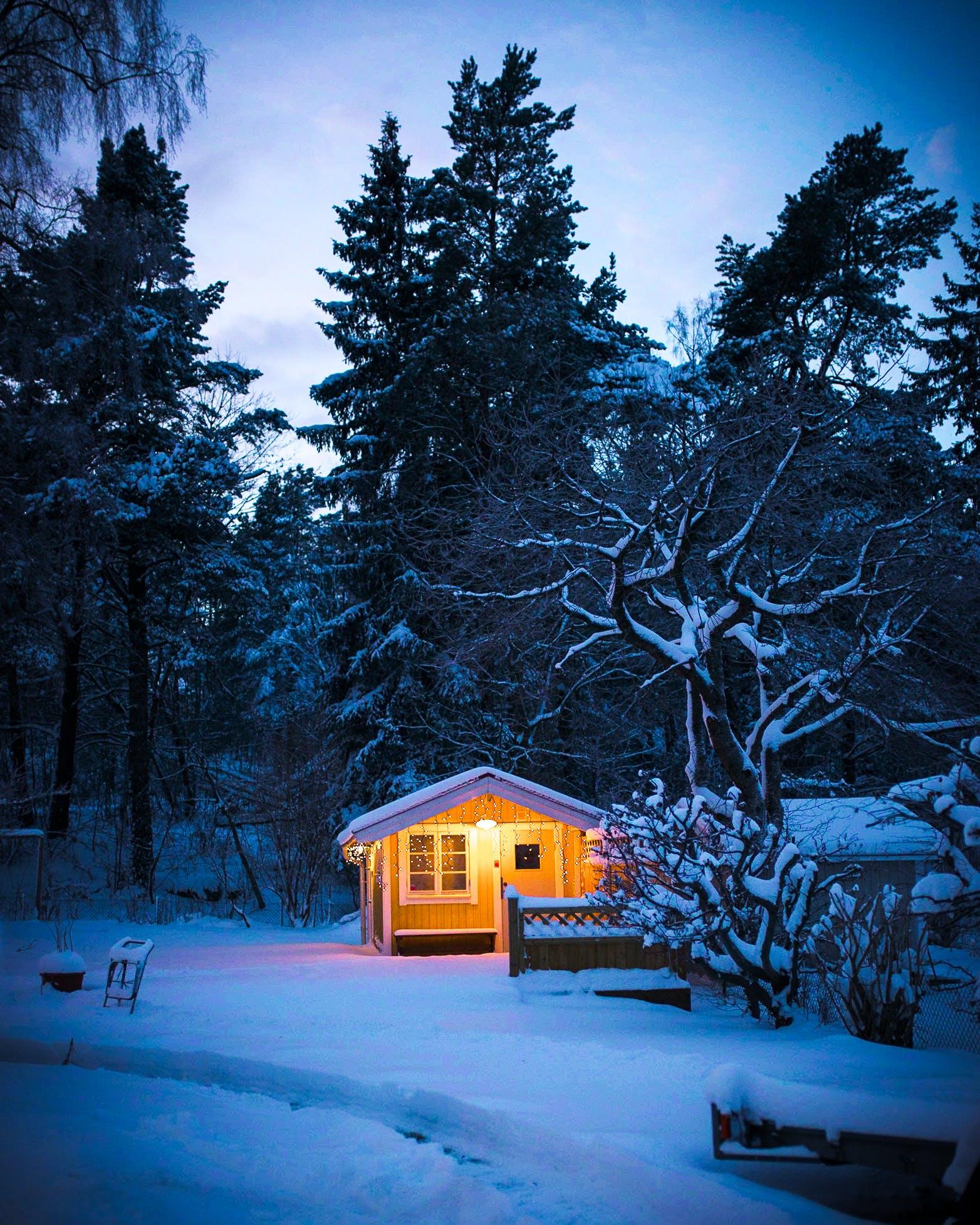 Free stock photo of cottage, cozy, dusk, snow