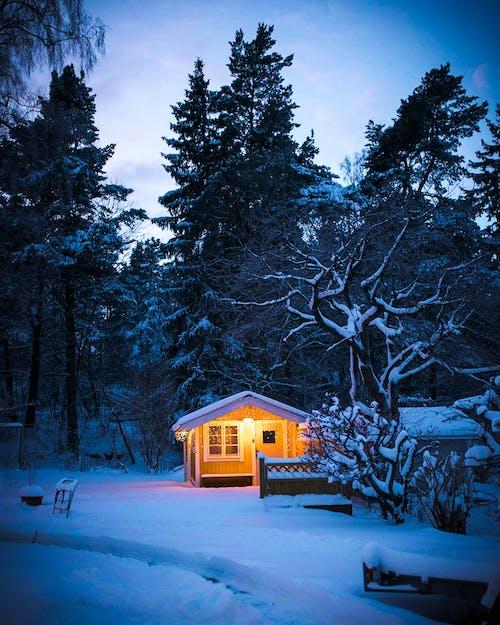 Fotobanka sbezplatnými fotkami na tému chata, sneh, útulný, zima