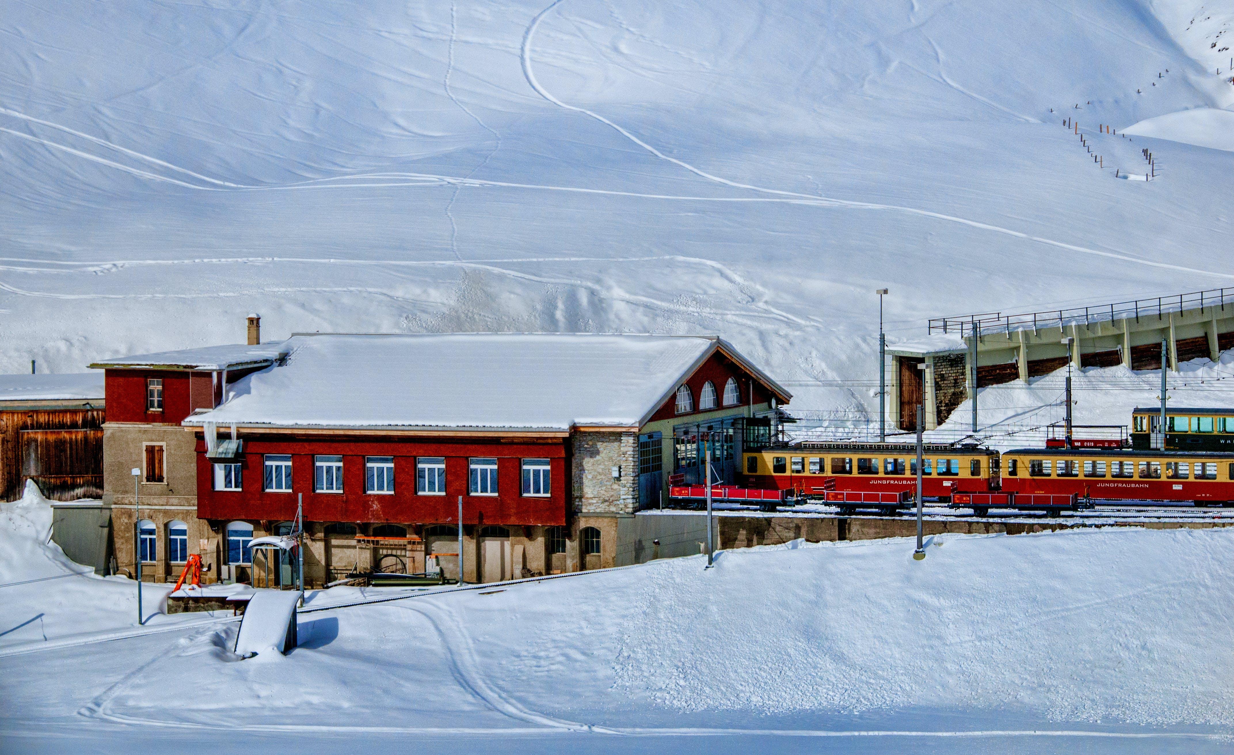 下雪的, 假期, 冬季, 冰 的 免费素材照片
