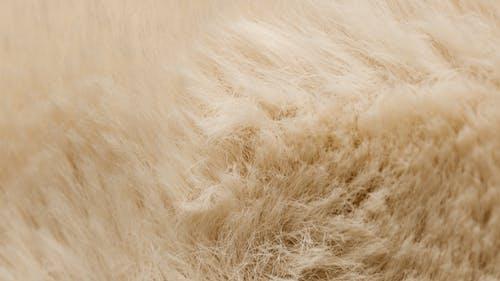 Cream Furry Textile
