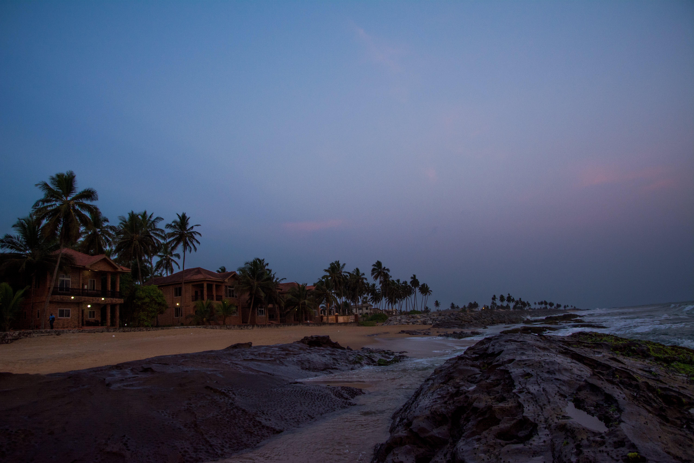 ağaçlar, deniz, deniz kıyısı, deniz manzarası içeren Ücretsiz stok fotoğraf