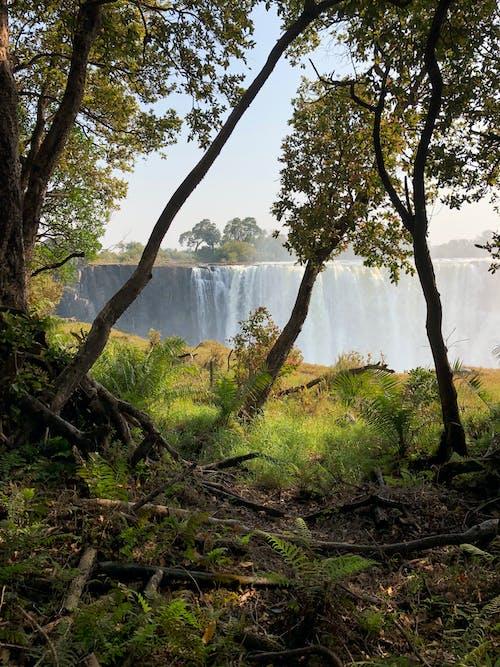 Free stock photo of beautiful landscape, waterfall