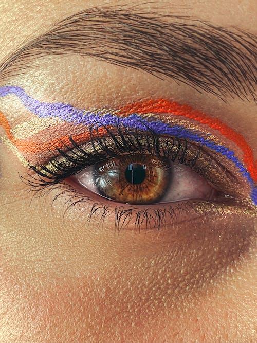 가벼운, 갈색 눈, 고요한의 무료 스톡 사진