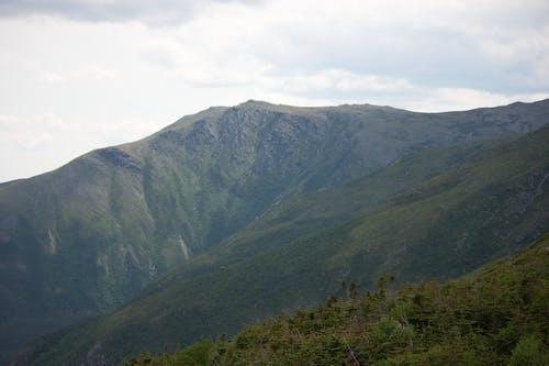 Kostenloses Stock Foto zu bäume, berg, natur