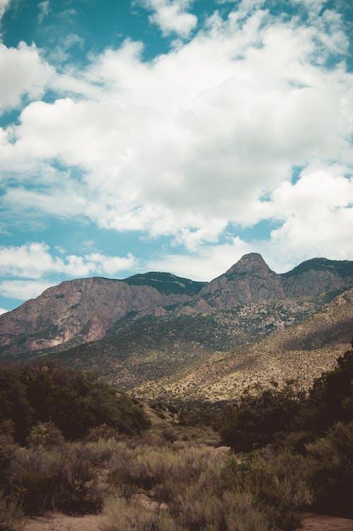 Free stock photo of Albuquerque, desert, New Mexico