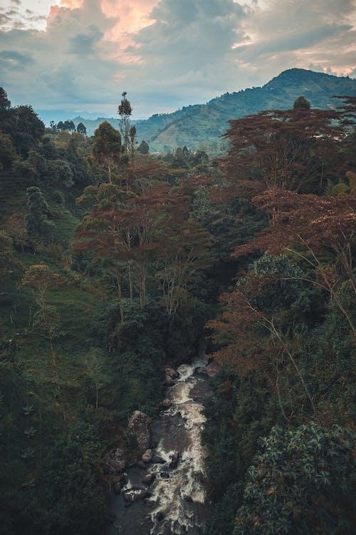 Ingyenes stockfotó atardecer, colombia, rio témában