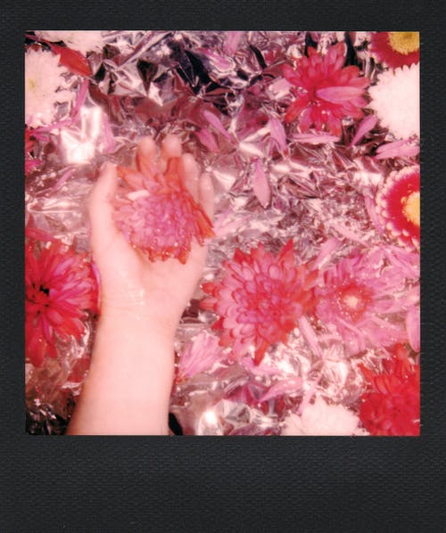Persons Feet on Pink and White Flowers