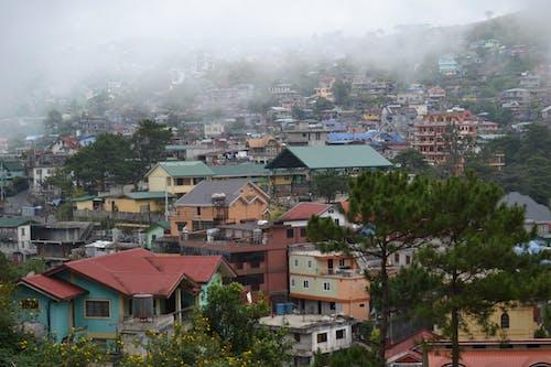 Free stock photo of baguio, mountain