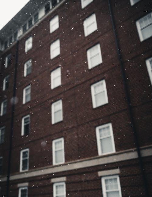 Безкоштовне стокове фото на тему «Windows, архітектура, Будівля, Денне світло»