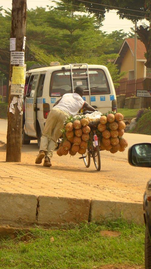Free stock photo of fresh fruit, kampala, organic foods