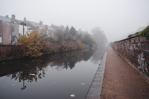 Calm water of channel flowing between brick wall and residential houses near green trees located in town in foggy weather