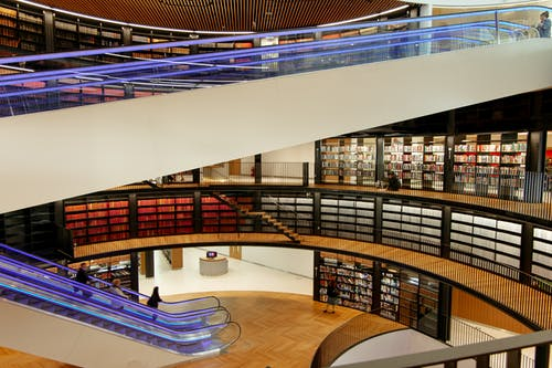 Interior of modern library with escalators