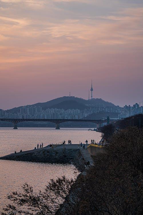 Immagine gratuita di corea, fiume, namsan