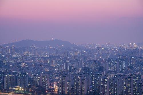 Immagine gratuita di cielo viola, città, corea