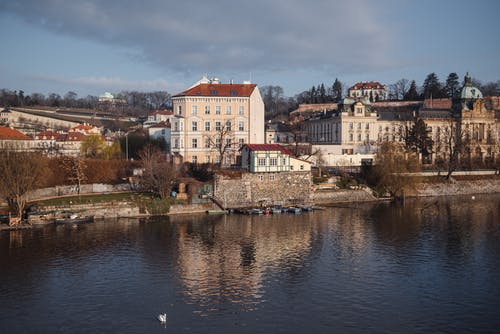 Residential buildings located on shore of calm river with tall trees near flowing water in coastal town against blue sky